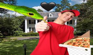 نجینی و پیتزا فروش