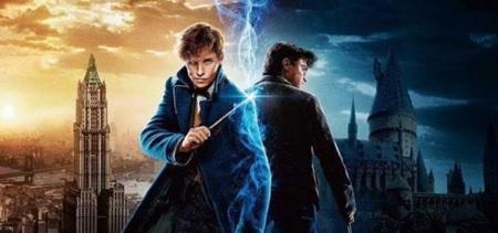 چرا نیوت اسکمندر شخصیت بهتری نسبت به هری است؟
