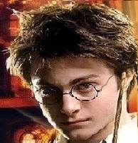 Harry1377