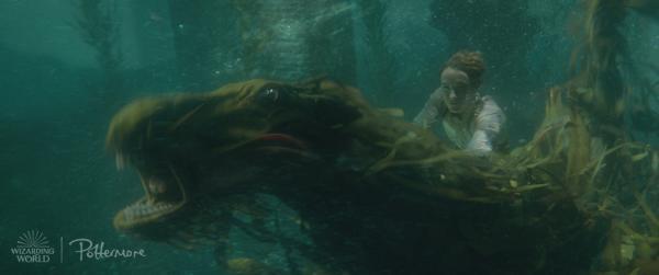 سواری نیوت زیر آب