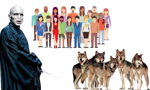 گم شدن گرگ های لرد ولدمورت!